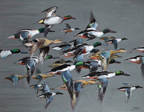 vol de canards souchet by patrice bac