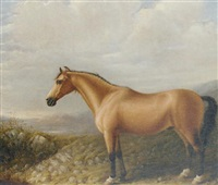 a palomino horse in a mountainous landscape by bennett hubbard