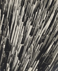 wood pickets, before by erhard dorner