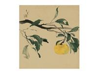 an orange by ryushi kawabata
