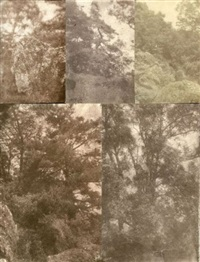arbres et rocher (study)(6 works, various sizes) by charles edouard (baron de crespy) le prince