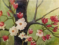 soulange magnolia by catherine mckinley smith