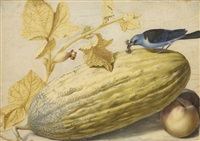 still life with a bird eating a caterpillar, a gourd, and two peaches by giovanna garzoni