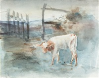 study of a calf by frances mary hodgkins