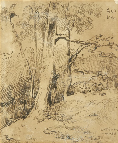 study of trees in india by george chinnery