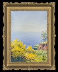 seaside by soter jaxa-malachowski