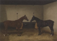 stable companions by e. hally