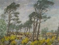 stormy aberdeenshire landscape by john macdonald aiken