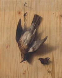 a trompe l'oeil of a thrush suspended from a nail and a butterfly by jacobus biltius