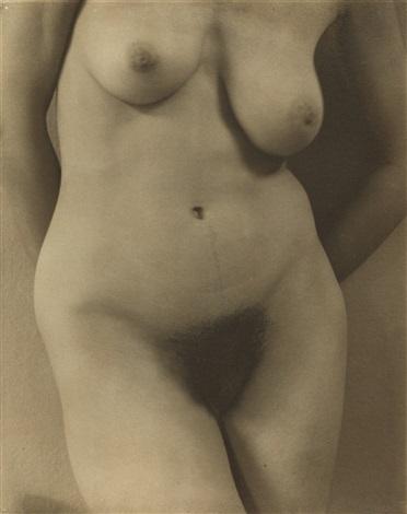 georgia okeeffe a portrait torso by alfred stieglitz