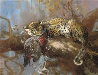 a leopard with its prey by cuthbert edmund swan