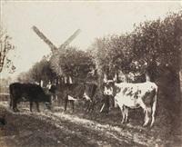 vaches et moulin à vent (from paysages de flandrepublié) by louis désiré blanquart-evrard
