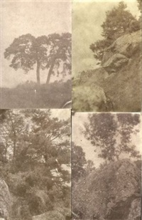 arbres et rocher (study)(4 works, various sizes) by charles edouard (baron de crespy) le prince