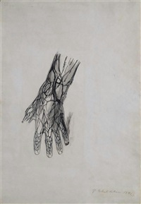 study of a hand by pavel tchelitchew