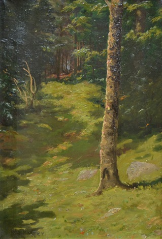 morning light in the woods by ben foster