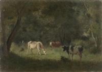 vaches dans la clairière by jean pezous