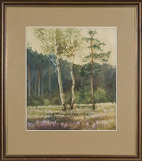 birches on the moor by józef rapacki