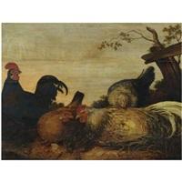 poultry in a landscape by gysbert gillisz de hondecoeter