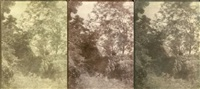 arbres et rochers (study)(3 works, various sizes) by charles edouard (baron de crespy) le prince