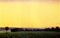 field, twilight by john beerman