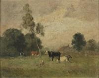 vaches dans un champ by jean pezous