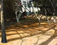 morning shadows by david keeling