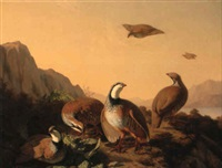 pheasant in a landscape by simon saint-jean