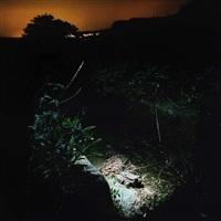 lumières dans la nuit n°3 by marthe lemelle