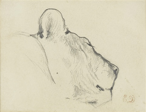 study of the head of a lioness by eugène delacroix