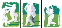 cricketers (3 works) by daniele fissore
