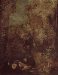 a grotto with wines, a green woodpecker and ducks in a pond by gilardo da lodi