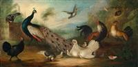 hühnerhof mit einem pfau und anderem geflügel by marmaduke cradock