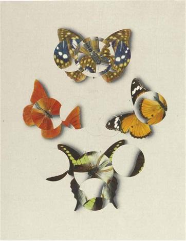 butterfly effect by gabriel orozco