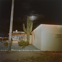 untitled (house with cactus) by richard misrach