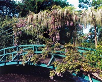 giverny 23, wisteria covered bridge by stephen shore