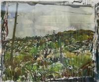 fields rain by nick miller