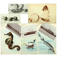easter eggs, fungi, grapes and fungi, sea horse, narwhal and sturgeon (6 works, various sizes) by marie (princess of denmark)