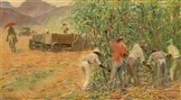 zuckerrohrernte in brasilien by meinhard jacoby