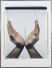handscape - nude by iain baxter