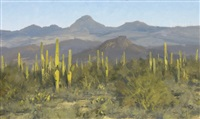 tonto forest vista by matt(hew) read smith