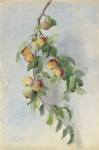 apple bough by helen sheldon jacobs smillie