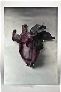 maschera by tina marie aufiero