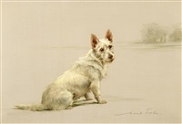 west highland white terrier in a landscape by maud earl