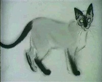 book illustration. siamese cat by clare t. newberry