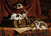 five playfull kittens by cornelis raaphorst