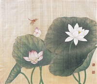 lotus blossom by you kyung sook