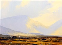 in the twelve pins from gleninagh, connemara by denis j. mcdowell