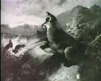 fox and quail by edwin armfield