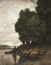 moutons au bord de la rivière by charles jacques
