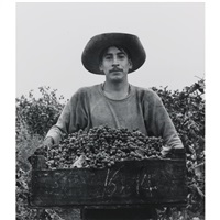 grape picker, berryessa valley, california by pirkle jones